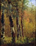thomas worthington whittredge art - birch trees by thomas worthington whittredge