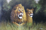african lion family painting 86316
