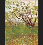 vincent van gogh cherry tree painting-77999