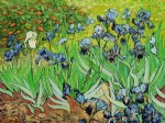 irises iv by vincent van gogh paintings