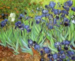 irises v by vincent van gogh paintings