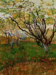 vincent van gogh orchard in bloom v painting