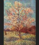 vincent van gogh peach tree in bloom painting 85685