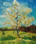 vincent van gogh pink peach tree painting 24004