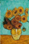 flowers posters - sunflowers by vincent van gogh