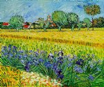 vincent van gogh view of arles with irises ii painting