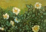 rose art - wild roses by vincent van gogh