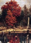 car posters - autumn wood in north carolina with tree stumps in water by william aiken walker