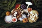 diane millsap art - mushrooms by william aiken walker