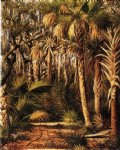 palm hammock with epiphytes by william aiken walker painting