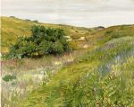 landscape art - landscape shinnecock hills by william merritt chase