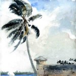 tropical watercolor paintings - a tropical breeze nassau by winslow homer