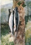 adirondack catch by winslow homer painting