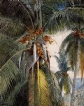 winslow homer coconut palms key west painting