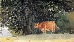 cow art - cow in pasture by winslow homer