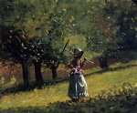 girl art - girl with a hay rake by winslow homer