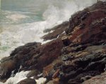 winslow homer watercolor paintings - high cliff coast of maine by winslow homer