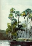 winslow homer homosassa river painting