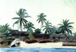 winslow homer negro cabins and palms posters