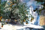 winslow homer orange tree nassau painting-21961