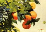 winslow homer oranges on a branch painting