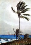 winslow homer palm tree nassau painting-21965