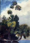 winslow homer palm trees florida painting-21966